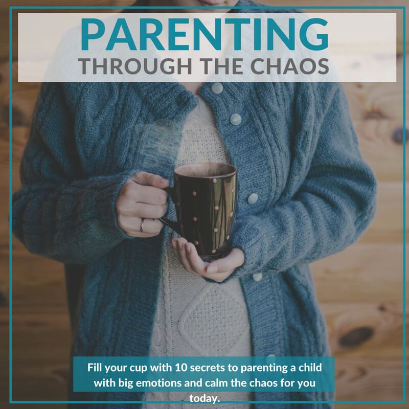 parenting-through-the-chaos-shop