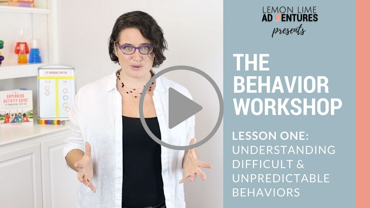 The Behavior Workshop Lesson One- Play